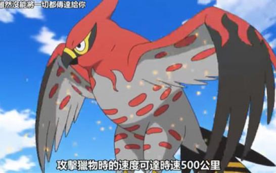 《Pokémon天梯入門》禁MEGA石後必用廚獸-No.663 疾風怒濤!烈箭鷹!