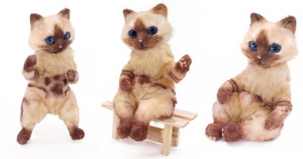 【貓奴注意】超逼真芒亨「艾露貓」公仔有得賣 !