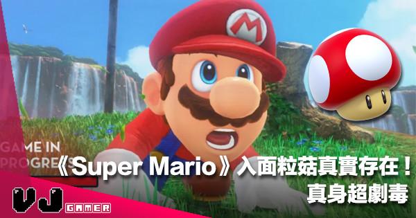 【遊戲花邊】《Super Mario》入面粒菇真實存在!真身超劇毒