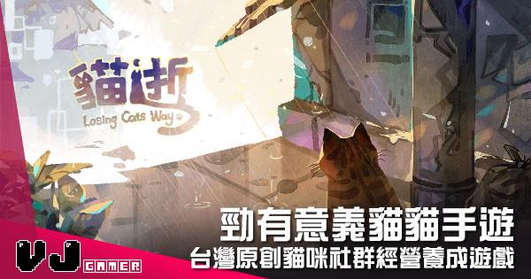 【遊戲介紹】勁有意義貓貓手遊 《貓逝 Losing Cats Way》台灣原創貓咪社群經營養成遊戲